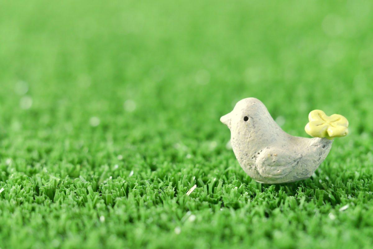クローバーと小鳥
